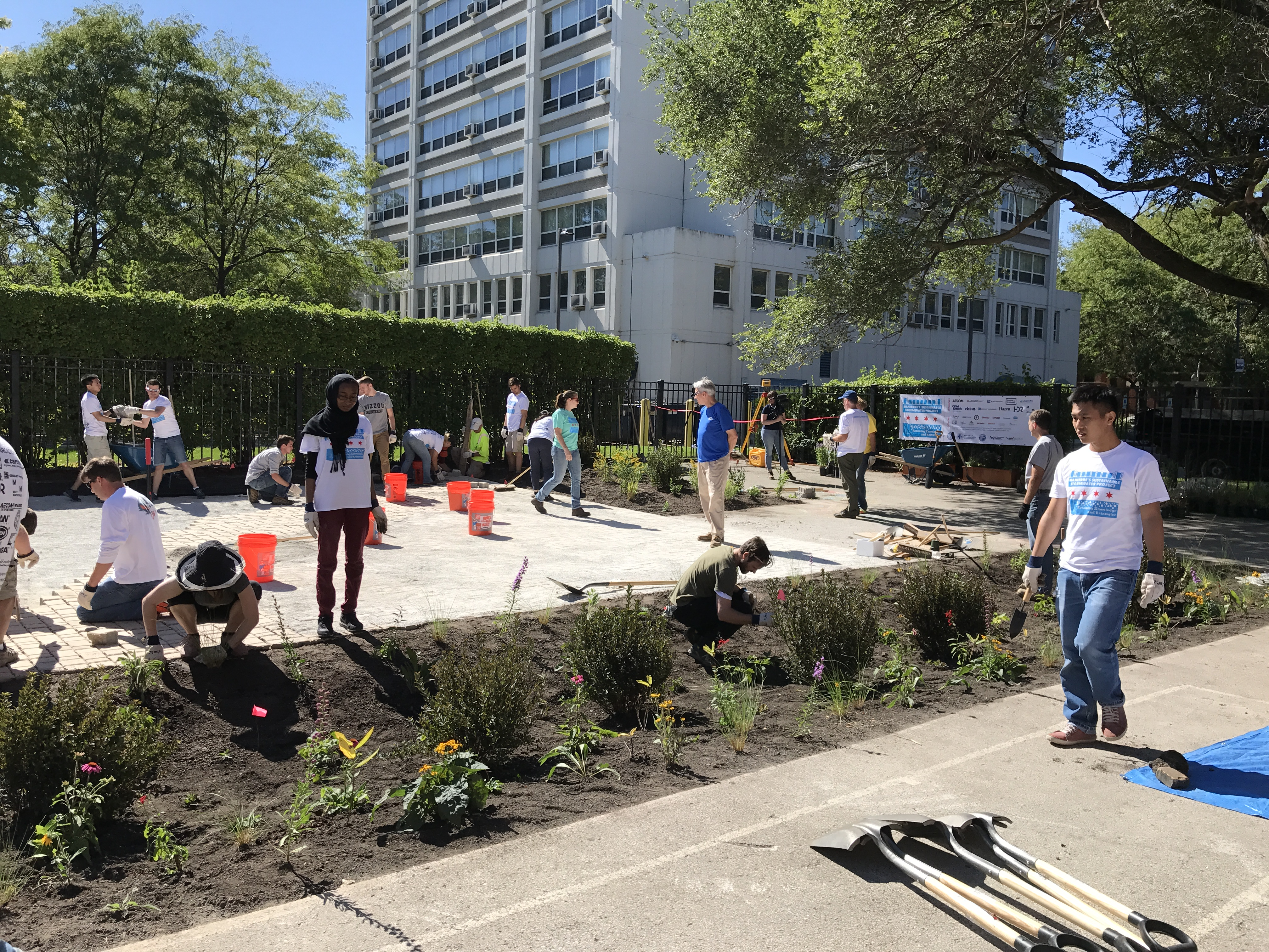 students completing bioswale